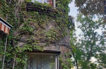 Elegáns, polgári hangulatú, napfényes villaépület Kissvábhegyen - angol