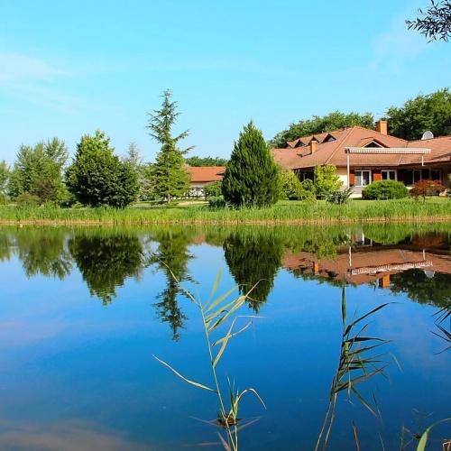 Budapesttől 35 kilóméterre 4 hektáros parkosított kertben luxus családi ház és halas tó
